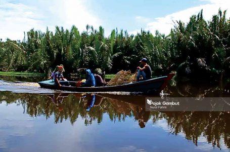 Warga Seuneuam melintasi sungai di kawasan lahan gambut untuk memasang bubu. Foto direkam Ahad, 18 Oktober 2020.