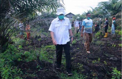 Gambut Aceh Rusak Akibat Penanganan Kurang Tepat