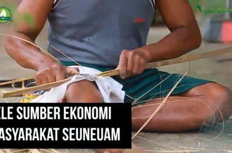 Lele Sumber Ekonomi Masyarakat Seuneuam