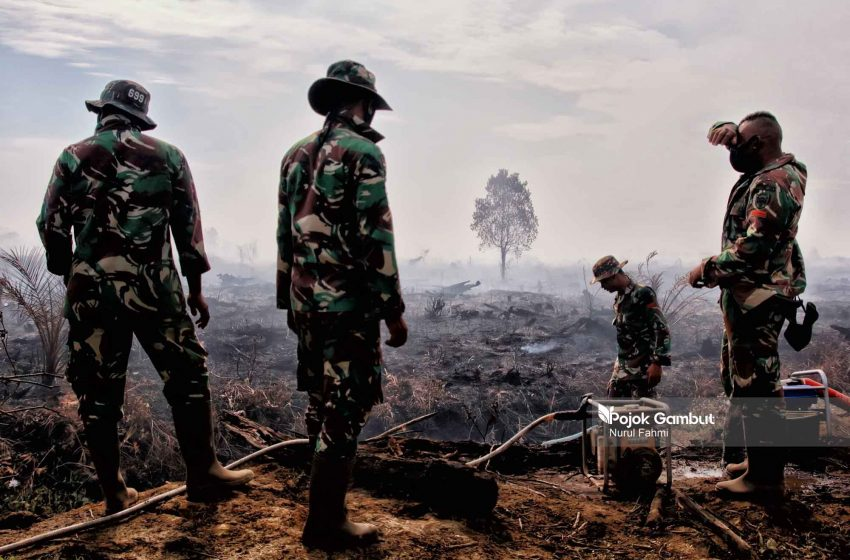 Kebakaran Lima Hektare Lahan Gambut di Aceh Barat
